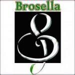 Brosella Folk & Jazz in Brussels, Belgium